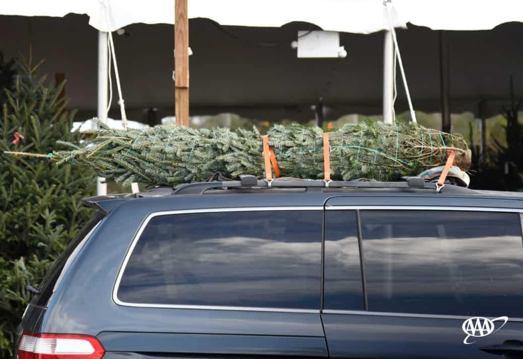 Christmas tree strapped on van